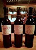 ssp-osborne-bottles